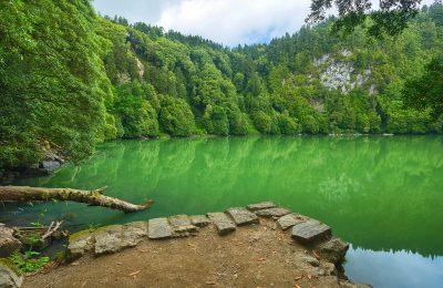 azores congro lake lagoa sao miguel